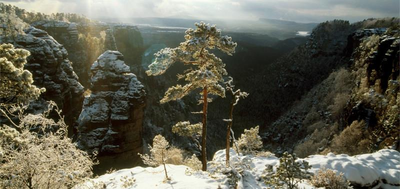 Winter in Saxon-Bohemian Switzerland