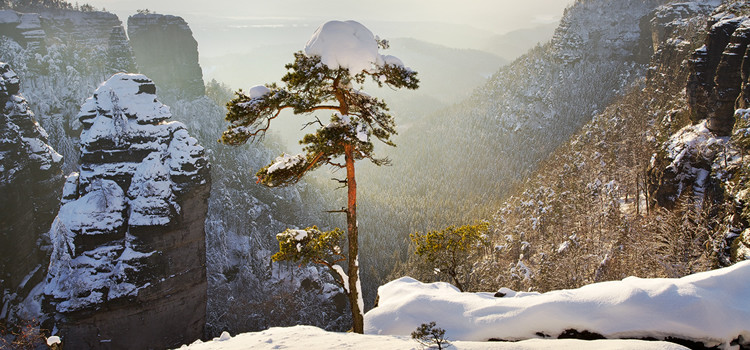 Winter in Bohemian-Saxon Switzerland