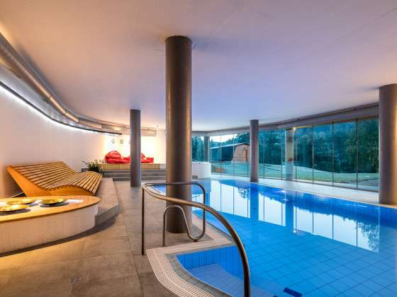 Wellness Hotel Ostrov - Pool